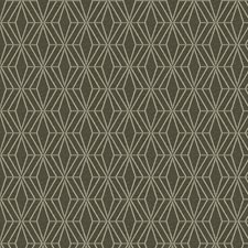 Light Brown Contemporary Decorator Fabric by S. Harris