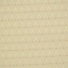 Rosemist Decorator Fabric by Robert Allen