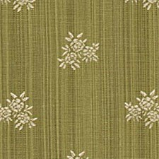 Grass Decorator Fabric by Robert Allen