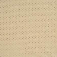 Champagne Embroidery Decorator Fabric by Vervain