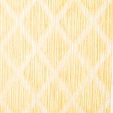 Daisy Global Decorator Fabric by Vervain