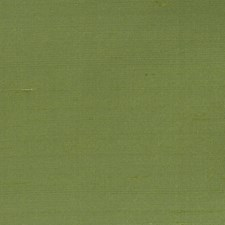Basil Solid Decorator Fabric by Vervain