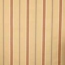 Rosewater Stripes Decorator Fabric by Vervain