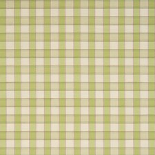 Cactus Check Decorator Fabric by Trend