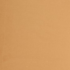 Apricot Solid Decorator Fabric by Trend