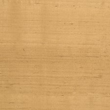Butternut Solid Decorator Fabric by Trend