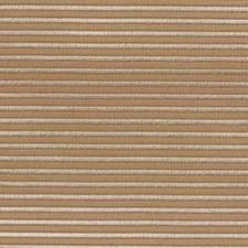 Sesame Decorator Fabric by Robert Allen/Duralee