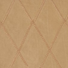Champagne Decorator Fabric by RM Coco