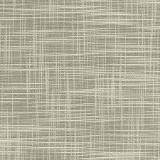 Birch Solid Decorator Fabric by Trend