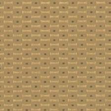 Thyme Decorator Fabric by Robert Allen