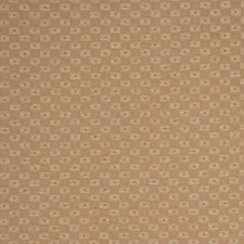 Brush Decorator Fabric by RM Coco