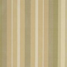 Taffy Decorator Fabric by Robert Allen
