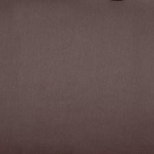 Bison Decorator Fabric by Robert Allen