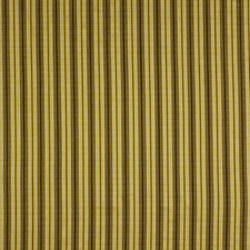 Golden Bronze Decorator Fabric by Robert Allen