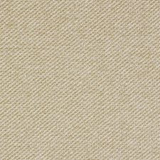 Beige Decorator Fabric by Robert Allen