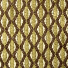 Tortoise Decorator Fabric by Duralee
