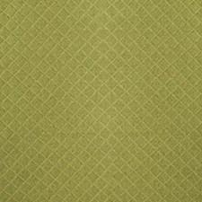 Fern Decorator Fabric by Duralee
