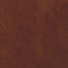 Carmel Animal Skins Decorator Fabric by Duralee