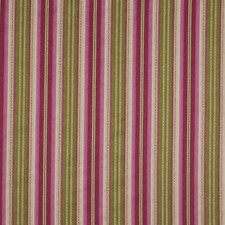 Perennial Decorator Fabric by Robert Allen /Duralee