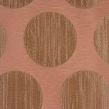 Peach Spice Decorator Fabric by RM Coco