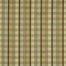 Pistachio Decorator Fabric by Robert Allen /Duralee