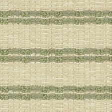 Pistachio Decorator Fabric by Robert Allen/Duralee