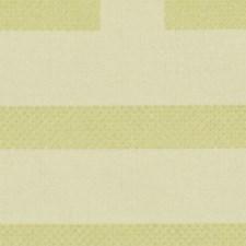 Citron Decorator Fabric by Robert Allen