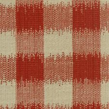 Poppy Decorator Fabric by Highland Court