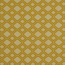 Honeysuckle Decorator Fabric by Robert Allen /Duralee