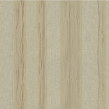 Taupe Stripes Decorator Fabric by Lee Jofa