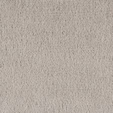 Greige Solids Decorator Fabric by Lee Jofa