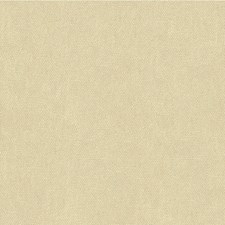Powder Texture Decorator Fabric by Lee Jofa