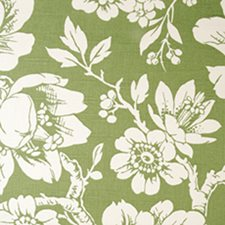 Fern Decorator Fabric by Duralee