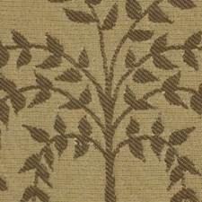 Amber Decorator Fabric by Robert Allen /Duralee