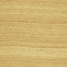 Filbert Texture Plain Decorator Fabric by Fabricut