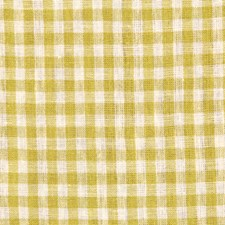 Kiwi Decorator Fabric by Robert Allen