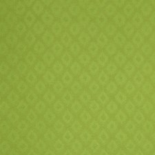 Kiwi Decorator Fabric by Robert Allen /Duralee