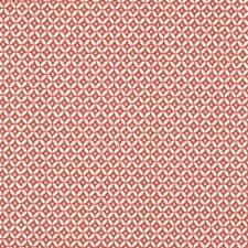 Blush Decorator Fabric by Robert Allen /Duralee
