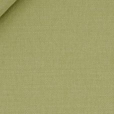 Apple Green Decorator Fabric by Robert Allen