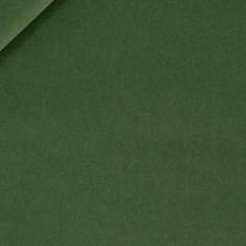 Palm Decorator Fabric by Robert Allen