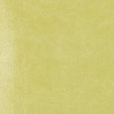 268499 DF16135 212 Apple Green by Robert Allen