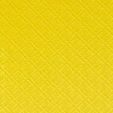270031 SU15878 66 Yellow by Robert Allen