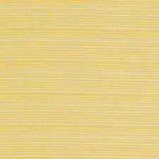 276205 DW16053 632 Sunflower by Robert Allen
