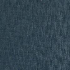 277845 DN15991 207 Cobalt by Robert Allen