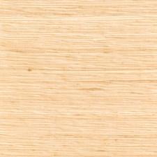 Sandstone Texture Plain Decorator Fabric by Fabricut