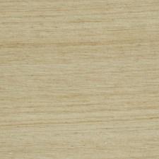 Marsh Texture Plain Decorator Fabric by Fabricut