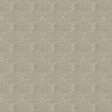 Eucalyptus Embroidery Decorator Fabric by Fabricut