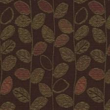 Carob Botanical Decorator Fabric by Kravet