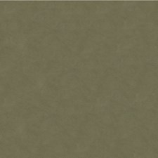 Flannel Solids Decorator Fabric by Kravet
