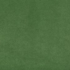 Grass Solids Decorator Fabric by Kravet